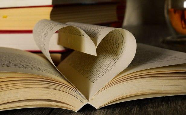 livro a sorte segue a coragem